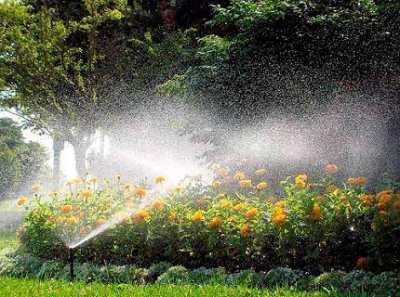 Система полива огорода – доверим рутинную работу технике