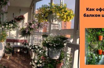 Как оформить балкон - оформление балкона цветами